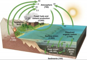 The goal is to model these complex systems at the present time but also into the recent and geologic past and into the future. This gets complicated quickly with all of the factors involved.