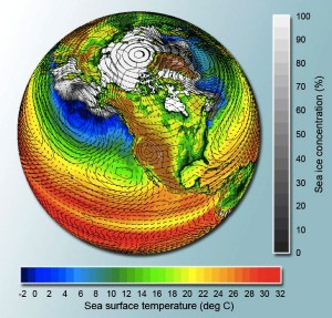 One type of GCM displaying the sea surface temperature and the sea ice concentration.