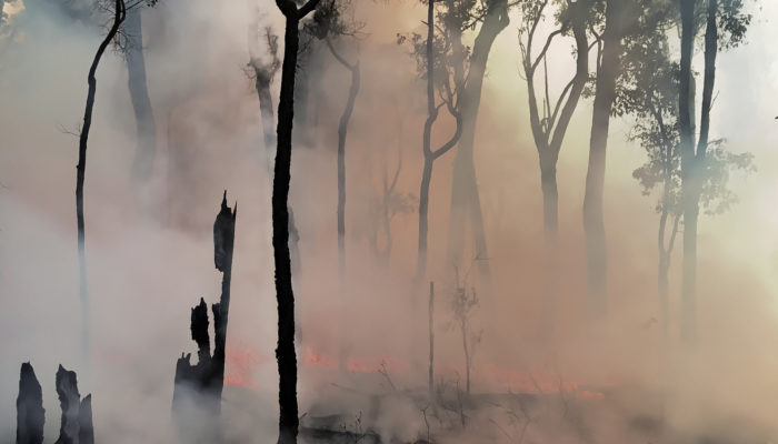 """Dear """"climate sceptic"""", do you have a fire insurance? – Climate policy under uncertainty"""