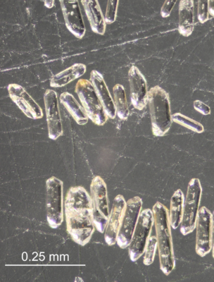 Detrital zircons: how the age of a resistant mineral can help to reconstruct the climate of the past