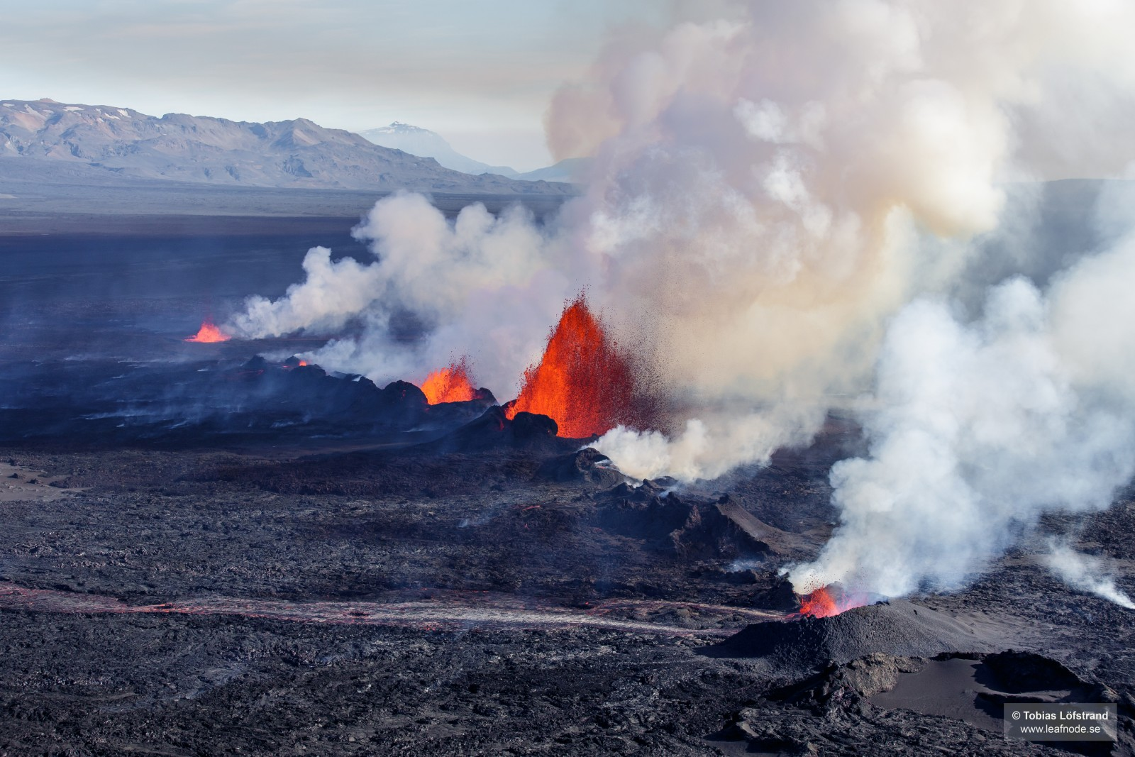 The fountains of lava accompanied by clouds of steam and sulphur-dioxide. The magma flowed 46 km underground from Bárðarbunga volcano to the eventual eruption site at Holuhraun, where it erupted continuously for 6 months. Photo Credit: Tobias Löfstrand