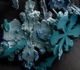 Image of the Week – The Journey of a Snowflake
