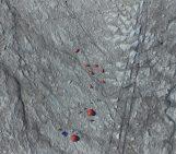 Image of the Week – Bioalbedo: algae darken the Greenland Ice Sheet