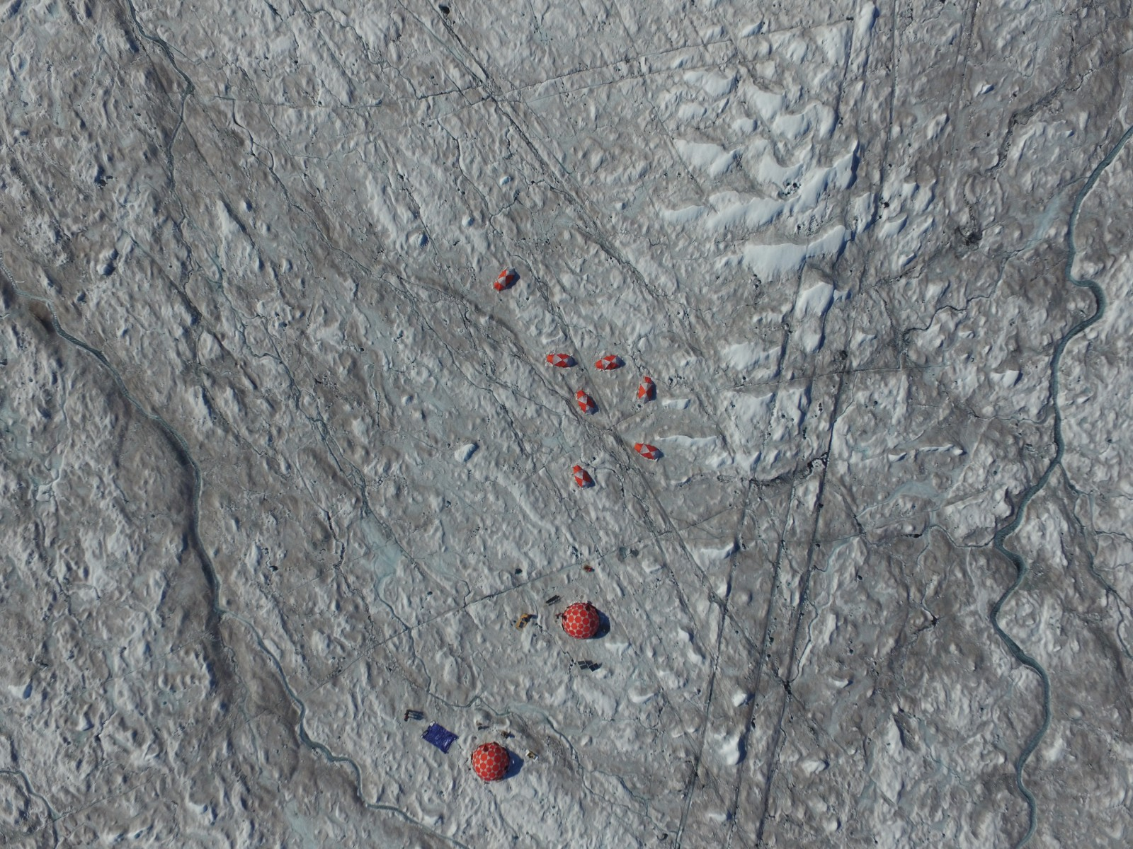 Image of the Week – Bioalbedo: algae darken the Greenland Ice Sheet