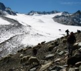 Education in glaciology: Witnessing the death of a glacier