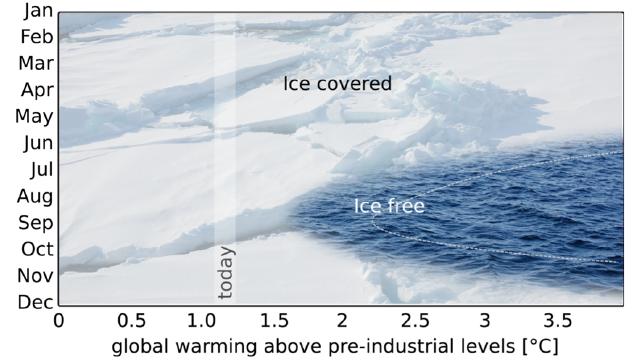 The future of Arctic sea ice