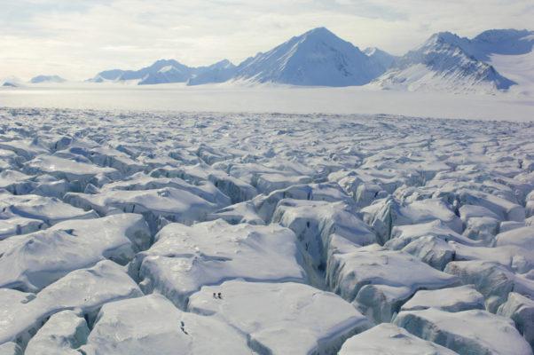 The Norwegian Polar Institute
