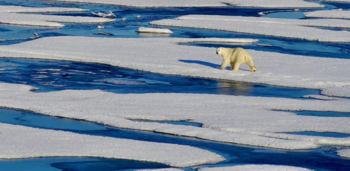 Will the Arctic be ice free earlier than previously thought?
