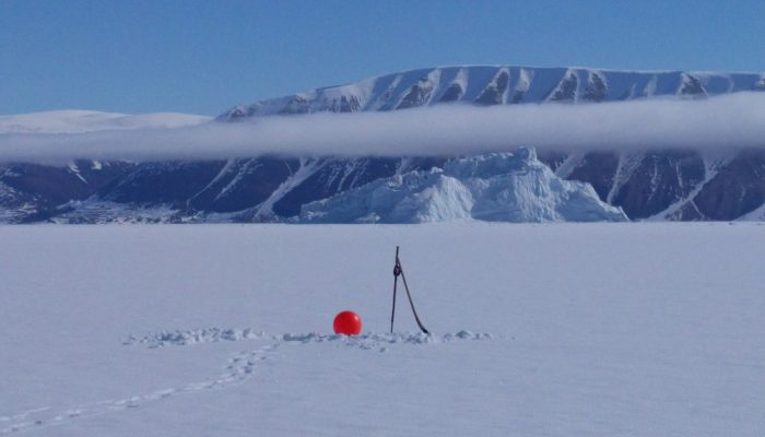 Image of the Week – Icy expedition in the Far North