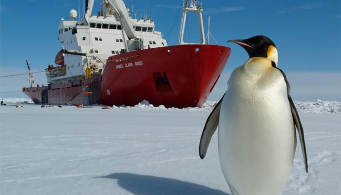 Image of the Week –  Stuck in the ice: could it have been predicted?