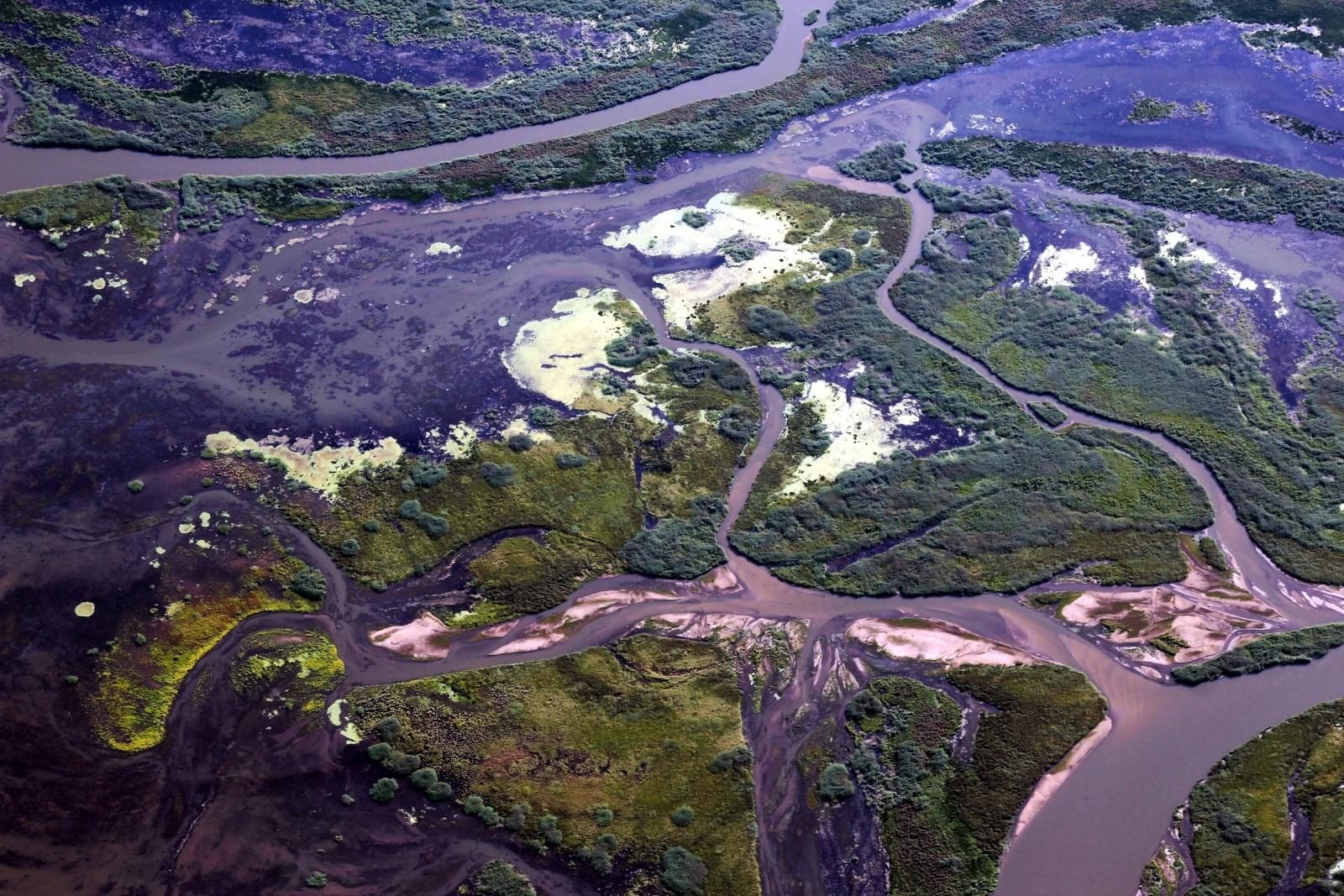 Where the Selenga River meets the Lake Baikal.  Credit:  Galina Shinkareva  (distributed via imaggeo.egu.eu)
