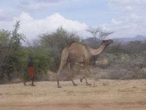 Kenya9
