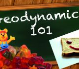 The jelly sandwich lithosphere: elastic bread, the jelly, and gummy bears