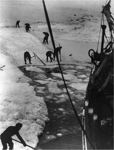 Shackleton's crew trying to free the Endurance.