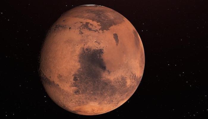 InSights into Mars' interior