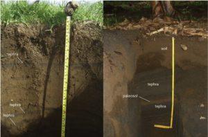 Volcanic Soil (Andisoils)