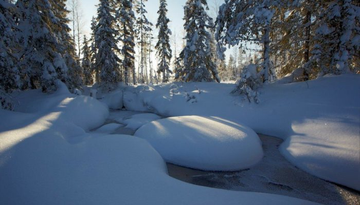 Talking hydrology: an interview with Hjalmar Laudon on hydrological research at the Krycklan catchment
