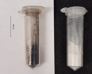Figure 2 Two examples of precipitation products recovered with the SPOP process. The black powder on the left is composed mainly of Jacobsite and it is recovered from a manganese and iron-rich solution. The white powder on the right is composed mainly Gordaite and it is recovered from a lead and zinc-rich solution.