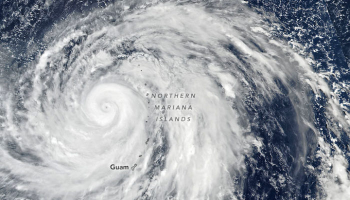 A coffee with Mr Fujitsuka: Typhoon Hagibis and the recovery process