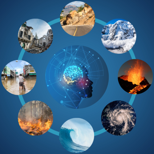 Artificial intelligence for disaster management: that's how we stand