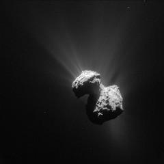 67P seen from Rosetta