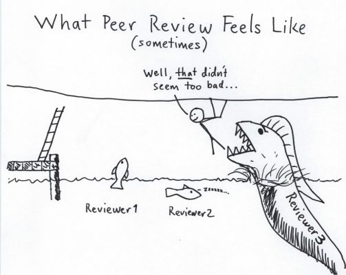 Harsher than reviewer 2?