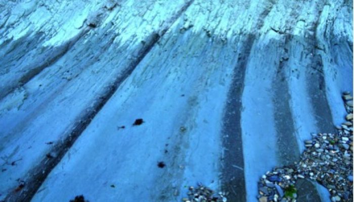 Welcome to the Stratigraphy, Sedimentology and Palaeontology division (SSP)