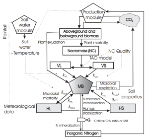 Flow diagram for the MOMOS model coupled with a soil water module and a production module. MB is the microbial biomass, VL is the labile necromass (NC), VS is the stable necromass, HL is the labile humus and HS is the stable humus. Click to download the paper.
