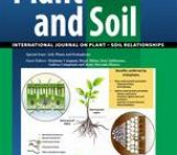 TOP-30 papers in the TOP-10 journals of the SOIL SCIENCES category (V): PLANT AND SOIL