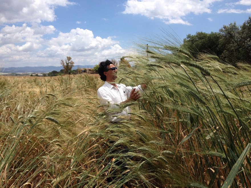 Giuseppe Li Rosi, supporter of traditional seed management. Source: larepubblica.it.