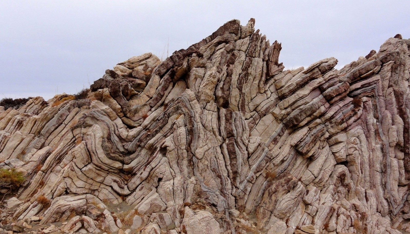 Tectonics and Structural Geology | Features from the field ...