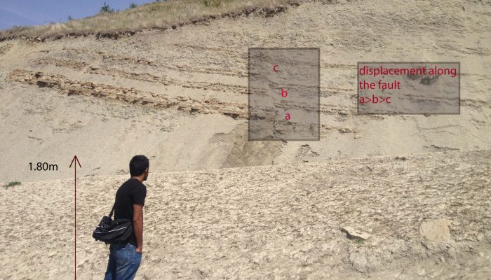Features from the Field: Growth Faults