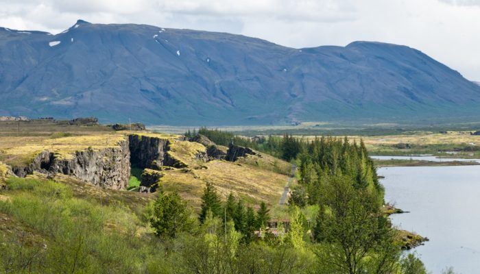 Minds over Methods: Massively dilatant faults in Iceland – from surface to subsurface structures