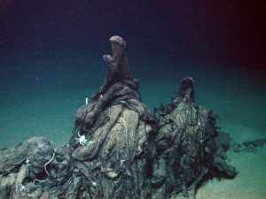 Asphalt Volcano in the Gulf of Mexico