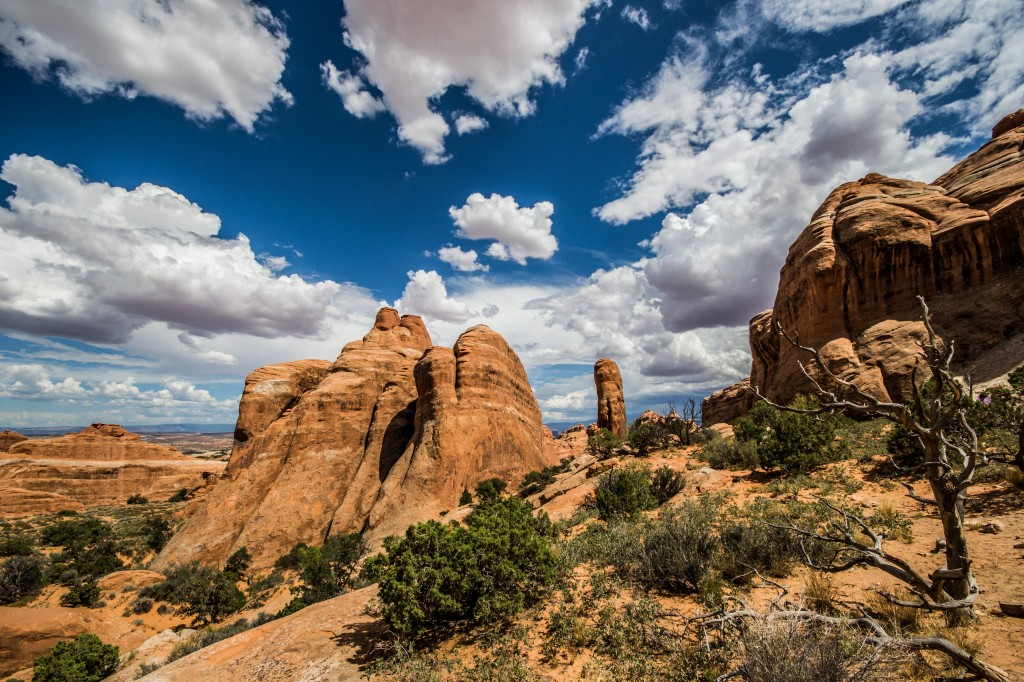 In some areas in Utah (USA), subsurface rock formations of the Entrada Sandstone have held natural CO2 accumulations for millions of years. (Credit: Suzanne Hangx)