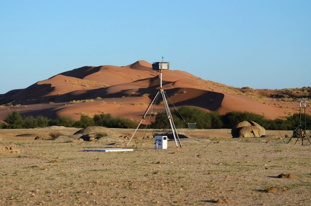 Gobabeb Site at the intersection of the Namib Sand Sea and the Kuiseb River. (Credit: F. Eckardt)