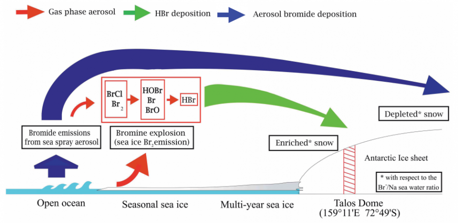 How bromine ions (bromide) makes it way from the ocean to the atmosphere and onto the surface of Antarctica (where it is later compacted by layers of snow, forming ice, and drilled to produce the Talos Dome ice core). Blue, red and green lines indicate aerosol-phase bromide, gas-phase bromide and hydrogen bromide, respectively. (Credit: Spolaor et al., 2013)