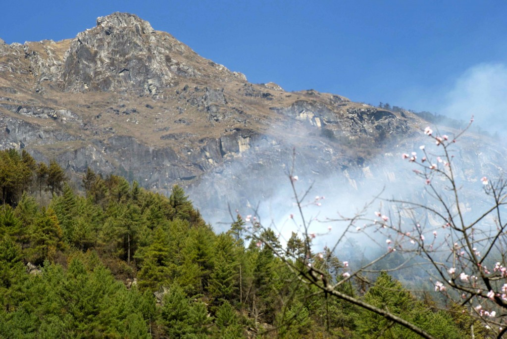 A forest fire broke out in the Khumbu Valley. (Credit: Jane Qiu)