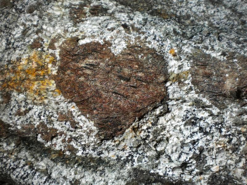 Heart-shaped garnet in a mafic granulite. (Credit: Barbara Kunz via imaggeo.egu.eu)