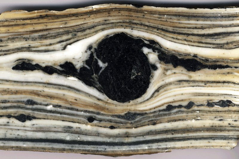 In reality, this shiny slab of rock is about 20 centimetres across. Polished to perfection, the layers of marble and amphibole are beautiful to behold. (Credit: Philippe Leloup via imaggeo.egu.eu)