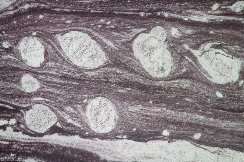 A thin section microphotograph (total width ~0.5 mm) showing several feldspar crystals with bended tails. These tails show that they have slowly rotated counter-clockwise. These rolling structures are characteristic of left-lateral ductile deformation. (Credit: Philippe Leloup via imaggeo.egu.eu).