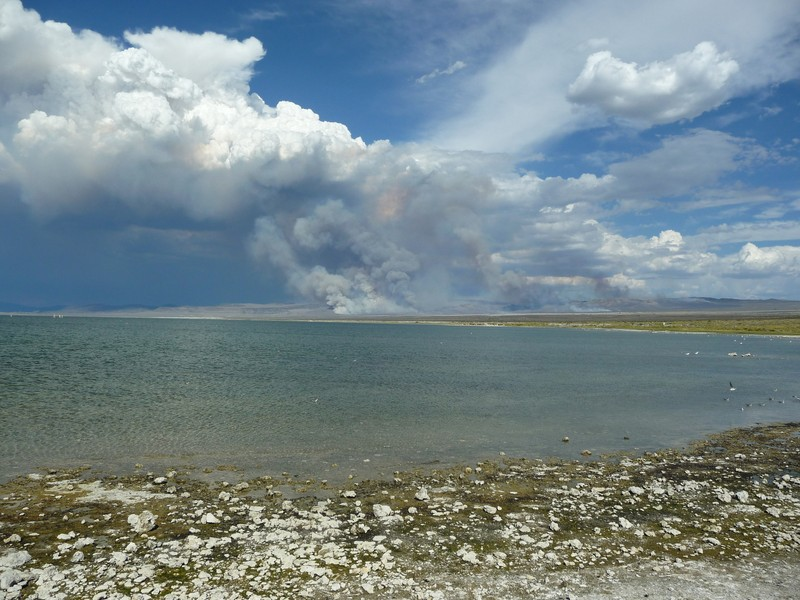 Desert fires feeding a convective cloud system over Mono Lake, California. (Credit: Gabriele Stiller distributed via imaggeo.egu.eu)
