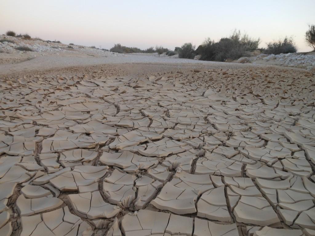 Shrinking Wadi Sediments. Credit: Vincent Felde (distributed via imaggeo.egu.eu)