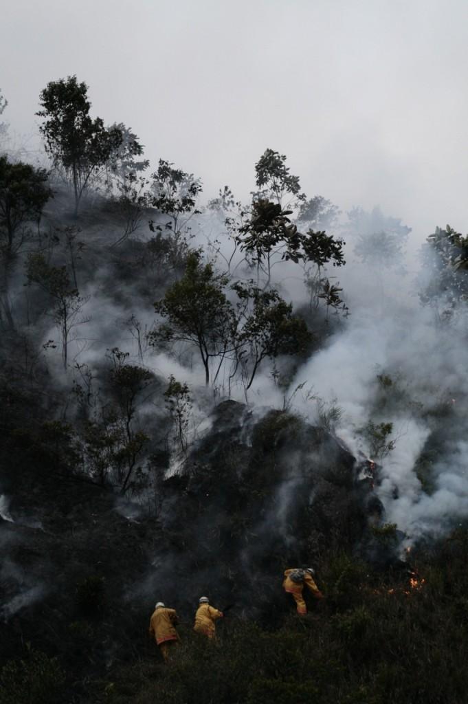 Forest fires.  Credit: Sandro Makowski (distributed via imaggeo.egu.eu) http://imaggeo.egu.eu/view/916/