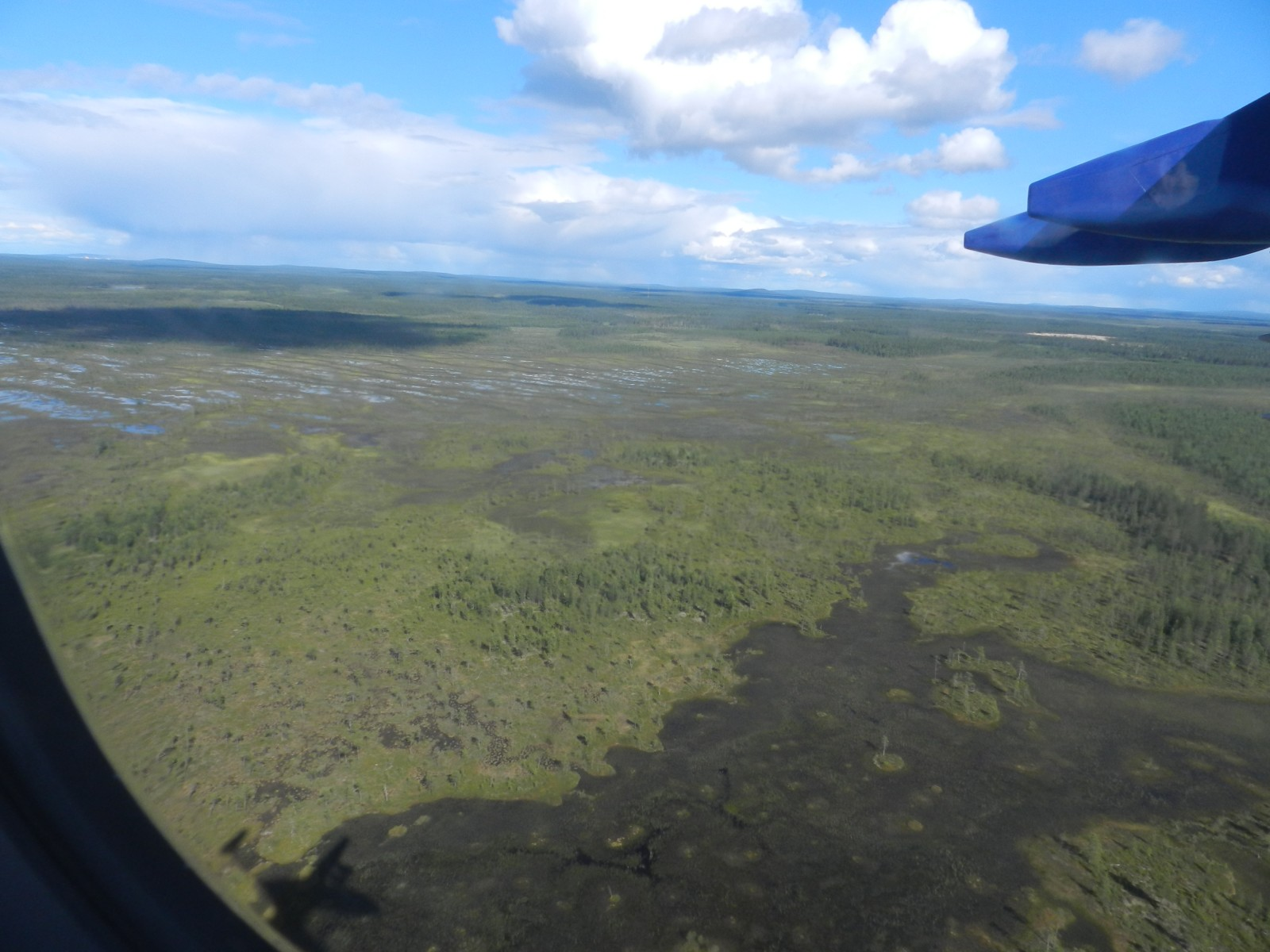 Flying low over an Arctic wetland: fun! (Photo Credit: Michelle Cain)