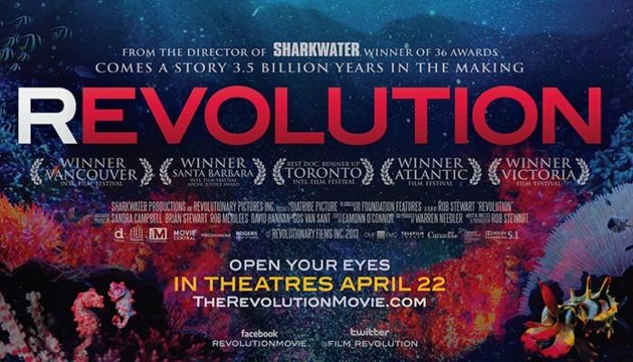Film review: Revolution