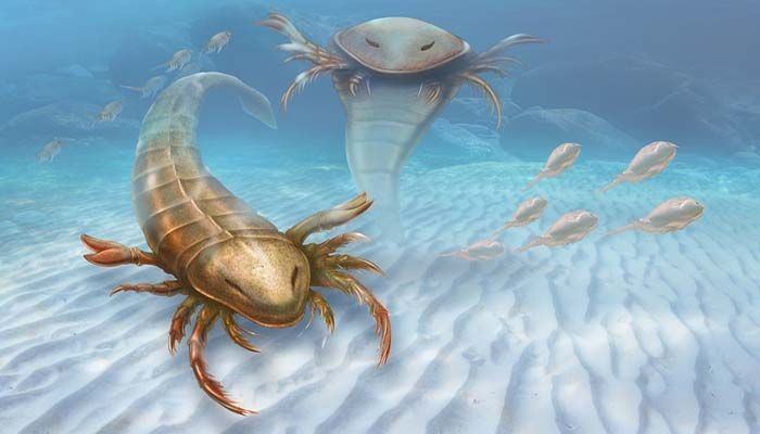 Geosciences Column: The Oldest Eurypterid