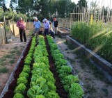Imaggeo on Mondays: The soil in your veg patch