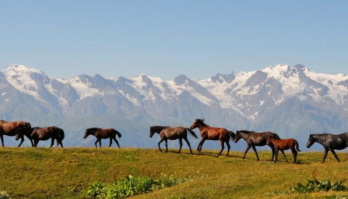 Imaggeo on Mondays: The retreating glaciers of the Svaneti Range, Georgia