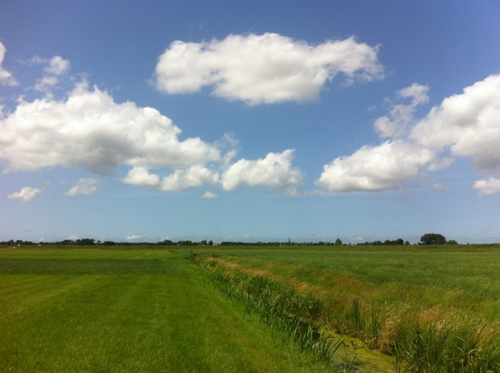 Location in the Dutch country side where researchers tested their prototype waders. Credit: Tim van Emmerik
